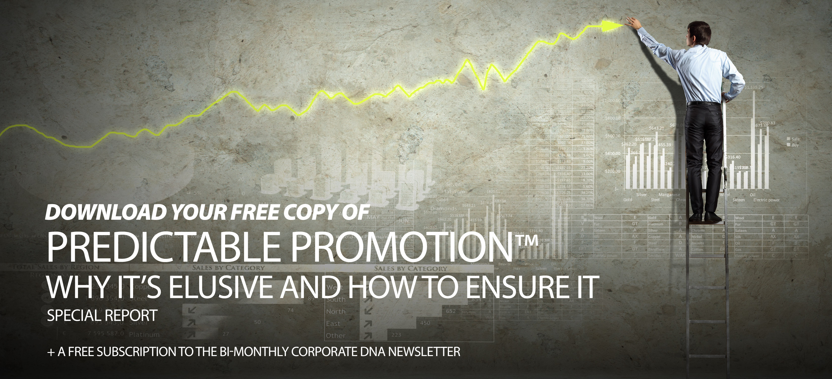 Predictable Promotion Special Report
