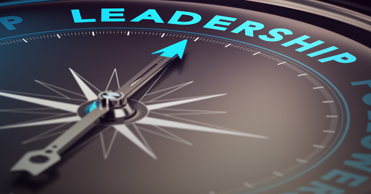 Do you utilize these strategies for leadership feedback impact?